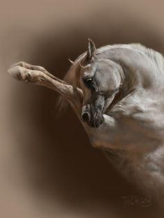 Arabian horse by Animal75Artist Beautiful Arabian Horses, Pretty Horses, Horse Drawings, Animal Drawings, Arte Equina, Horse Artwork, Horse Portrait, Horse Sculpture, White Horses