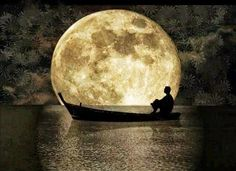 reminds me of clair de lune <3