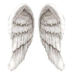 Google Image Result for http://redmountainlaw.files.wordpress.com/2012/06/angel_wings.jpg