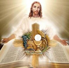 The Sacred Heart of Jesus Catholic Pictures, Pictures Of Jesus Christ, Heart Of Jesus, Jesus Is Lord, Jesus Christus, Divine Mercy, Blessed Mother, Sacred Heart, Christian Art