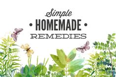 Prep Day: How to Make and Store Homemade Soup In Advance + 10 Simple Soup Recipes - Live Simply Homemade Neosporin, Homemade Toothpaste, Homemade Moisturizer, Homemade Facials, Cleaners Homemade, Homemade Soup, Homemade Sunscreen, Homemade Products, Tea Tree Essential Oil