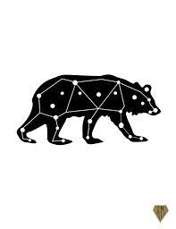 Image result for bear  constellation illustration