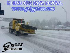 http://www.griggstree.com/snow-removal