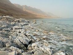 The Dead Sea Will Live Again | Wayne Stiles