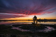 FEATURED PHOTOGRAPHER OF THE WEEK Now thats one vibrant image - just look at the colours in that sky! Fujifilm X-T1 user @trvphoto certainly made the most of the cameras Film Simulation modes in this shot of the Fishermans Memorial in Eureka California. He emphasised the sky by using a super-wide XF14mm lens to add even more impact. Great shot! #fujifilm #xt1 #wideangle #xf14mm #sunset #colour #sky #fisherman #memorial #eureka #california via Fujifilm on Instagram - #photographer…