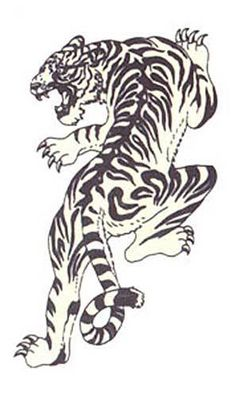 Something similar to this tiger will be going on my ribcage soon