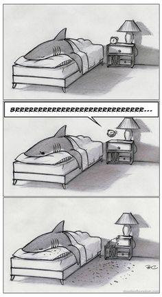 Tiburones *--*♡