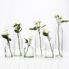 6 Piece Yucca Valley Indoor / Outdoor Use Glass Table Vase Set Wedding Reception Centerpieces, Flower Centerpieces, Simple Centerpieces, Outdoor Table Centerpieces, Peonies Centerpiece, Quinceanera Centerpieces, Wedding Vases, Decor Wedding, Diy Wedding
