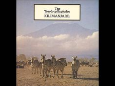 The Teardrop Explodes - Kilimanjaro [Full Album]