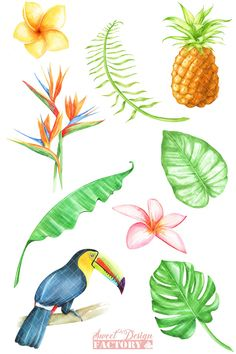 Tropical watercolor clipart #Ad , #affiliate, #digital#collage#printing#goodies