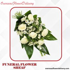 A funeral flower sheaf with white roses and other pure white flowers. #funeralflowers #funeralflowersheaf #flowersheaf #flowers #whiteflowers #florist #funeralflower #sympathy #sympathyflowers White Roses, White Flowers, Flower Delivery Service, Sympathy Flowers, Funeral Flowers, Pure Products, Pure White