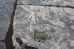 Artemis'in atribüsü olan geyik kabartması-Aizanoi, Kütahya