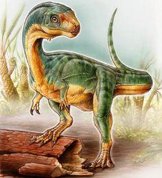 "BioOrbis: O Dinossauro ""Ornitorrinco""?"