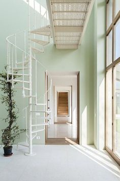 Mint green walls and white spiral staircase Green Wall Color, Wall Colors, Home Interior, Interior And Exterior, Interior Design, Mint Green Paints, Mint Green Walls, Stair Walls, Spiral Staircase