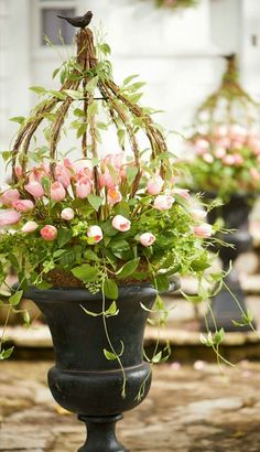 Grapevine birdcage topiary with climbing roses make a gorgeous container garden in a patina urn.