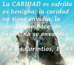 1ª a los Corintios, 13:4 - La caridad es sufrida, es benigna; la caridad no tiene envidia, la caridad no hace sin razón, no se envanece