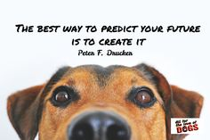 Peter F. Drucker / The best way to predict your future is to create it