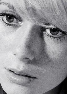 Catherine Deneuve in the Roman Polanski film Repulsion, 1965 Catherine Deneuve, Hollywood Stars, Old Hollywood, Roman Polanski, French Actress, French Films, Classic Beauty, Famous Faces, Beautiful Actresses