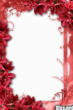 png frame love frame png flower frame wedding frame romantic frame photo frame for lovers romantic