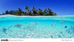 #Maldivler #ada #tatil #seyahat