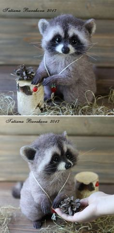 "Felted Raccoon | Валяный енот ""Вениамин"" — работа дня на Ярмарке Мастеров Needle Felted Animals, Felt Animals, Cute Animals, Racoon, Felt Diy, Felt Crafts, Felt Dolls, Doll Toys, Lã Merino"