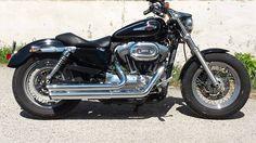 La 1200 Custom de Florence Asensi ! #customculture #sportster #inspiration #harleydavidson #harley #custom #motocycles