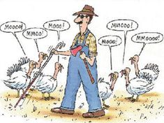 Thanksgiving and Black Friday Funnies