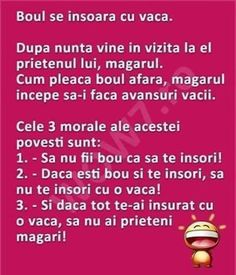 Adevărat Funny Quotes, Humor Quotes, The Funny, Haha, Self, Jokes, Life, Facebook, Comics