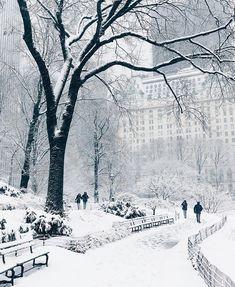 "nycityworld: ""Central Park. Photo by @jssilberman  #ny #nyc #newyork #newyorkcity #city #street #usa"""