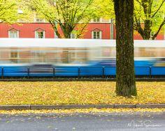 19 October 2016. Gothenburg Sweden. #mikaelsvenssonphotography #göteborg #thisisgbg #gothenburg #sweden #bestofsweden #enjoysweden #ig_week_sweden #igersgothenburg #ig_week_scandinavia #visitgothenburg #visitsweden #mittgöteborg #goteborgcom #swedenimages #bestofscandinavia #igersgbg #ig_sweden #ig_masterpiece #ig_mood #igers_gothenburg #unlimitedscandinavia #loves_sweden #gbgftw