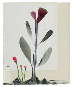 Anke Roder 'Butterfly Flower' 2015 collage 31 x 25 cm
