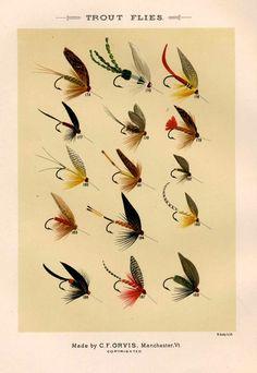 trout flies glorious fly fishing print no 3 by EPHEMERApress, $12.50