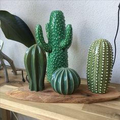 Ceramic cactus #ikea