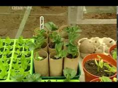 Alan Titchmarsh  The Productive Garden Vegetable Gardening  HQ