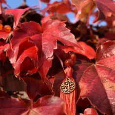 carnelian mala against autumn leaves Spiritual Life, Carnelian, Autumn Leaves, Make It Yourself, Plants, How To Make, Jewelry, Jewlery, Fall Leaves