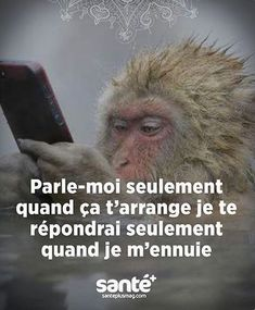 on en parle plus images Best Quotes, Love Quotes, Funny Quotes, French Quotes, Positive Attitude, Words Quotes, True Stories, Sentences, Decir No