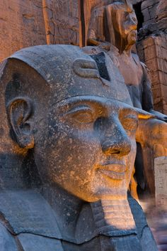 Statue in the ancient Egyptian Luxor Temple at night, Luxor, Thebes, UNESCO World Heritage Site, Egypt, North Africa, Africa