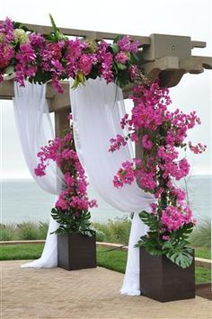 bougainvillea LOVE--beautiful for a wedding! Start way ahead or use fake flowers. Wedding Ceremony Ideas, Ceremony Decorations, Our Wedding, Destination Wedding, Wedding Planning, Dream Wedding, Ceremony Arch, Garden Wedding, Enchanted Florist