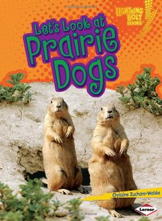 Color the Prairie Dogs Colors, Coloring pages and