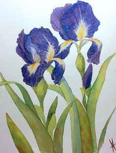 Watercolour & Acrylic Paintings by  Michelle Williams, St.Catharines, ON