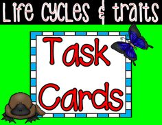 **This set aligns to 3rd Grade NGSS!**This set includes 16 open-ended question cards related to life cycles and traits. This set can be used throughout your unit as review, and/or at the end of your unit in whole-group or small group review. This set can be used like Scoot, to get kids up and moving around the room, or can be used as independent practice.