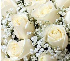 Cuál es el significado de las rosas blancas - 5 pasos