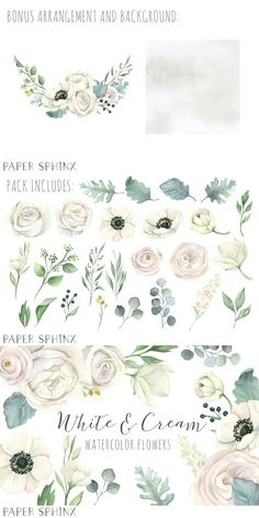 25 watercolor flowers and leaves, with bonus arrangement and background. Includes flowers in beautiful shades of white, as well as greenery including dusty