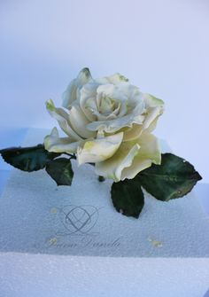 rose sugar paste
