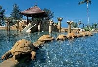 Need some help finding the best Phuket family hotels and resorts? Choose from fun resorts, cheap hotels, luxury villas and holiday apartments. Holiday Apartments, Cheap Hotels, Luxury Villa, Phuket, Hotels And Resorts, Family Travel, The Good Place, Water, Places