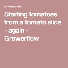 Starting tomatoes from a tomato slice - again - Growerflow