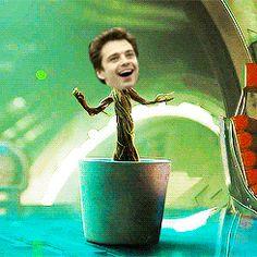 cuteness Groot Sebastian :D