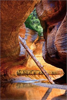 ✯ The Subway - Zion National Park - Utah - Canoe trip through here would be awesome!