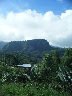 Tena, Ecuador..the rainforest..i must visit