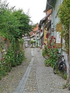 莫奈晚年居住的吉维尼小镇 梦一样的地方